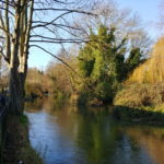 Journee-Canterbury-dec-2018-024